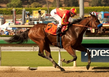 Pegram, Watson or Weitman's Executiveprivilege and Rafael Bejarano win the Grade I $250,000 Chandelier Stakes Saturday, September 29, 2012 at Santa Anita Park, Arcadia, CA.