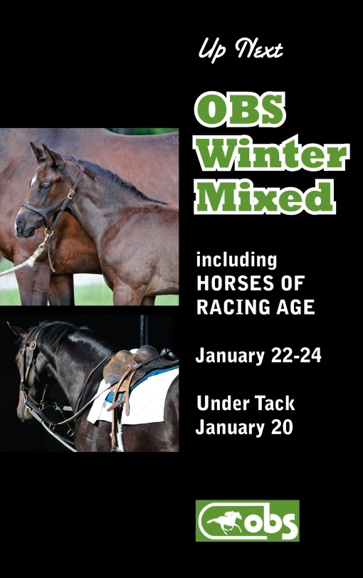 2014 Winter Mixed Sale