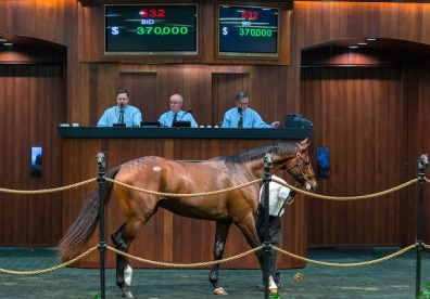OBS oct 2014532		33.3	12 	C     	 	Tapit	My White Corvette	 	Eddie Woods, Agent III	Gerald Frankel	370,000  	, 554		32.3	12 	F     	 	Medaglia d'Oro	Seeknfind	 	Gayle Woods, Agent	Amy Tarrant	180,000