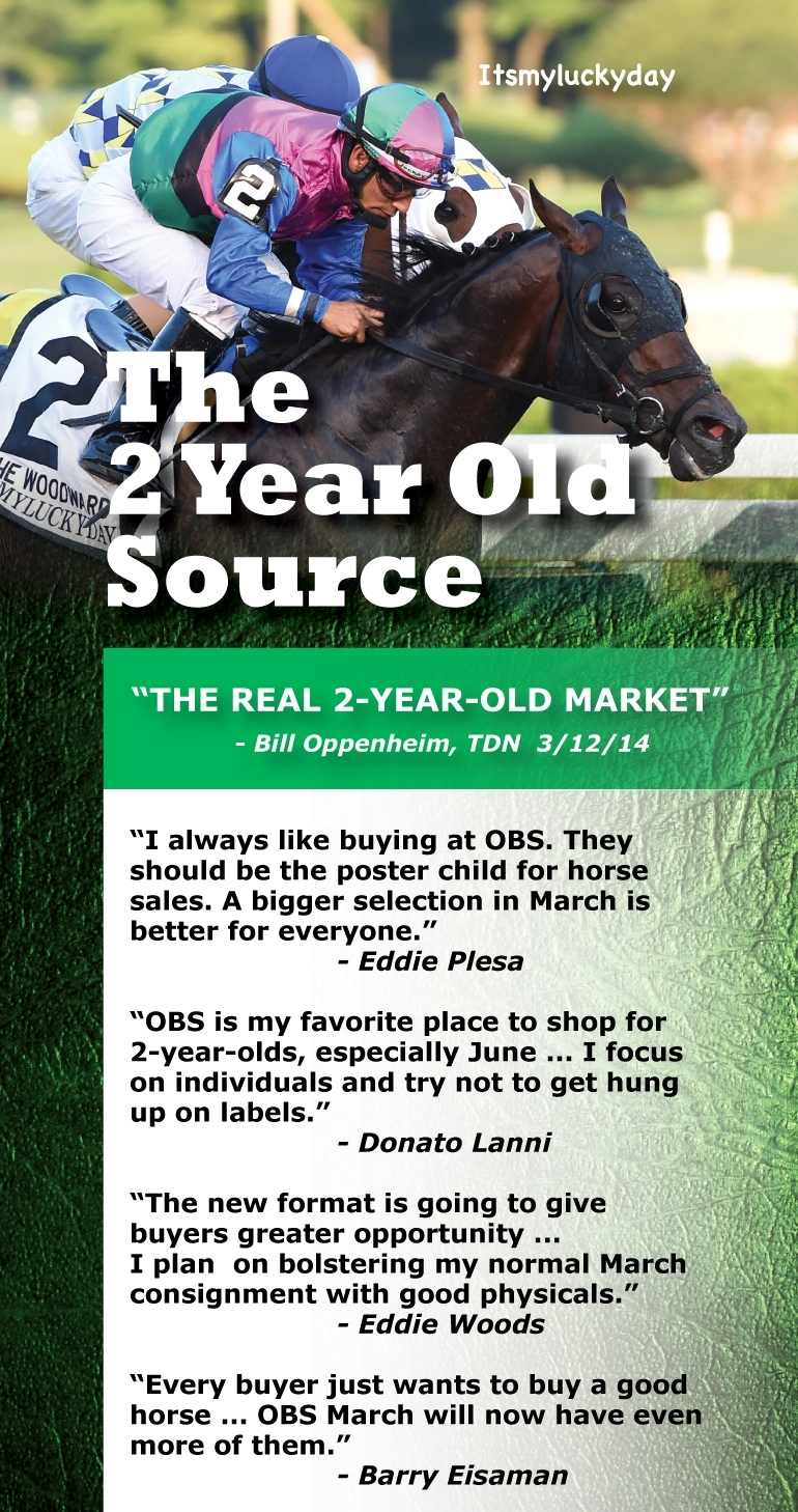 TDN half #5 Real Market and quotes Nov 9_webcrop
