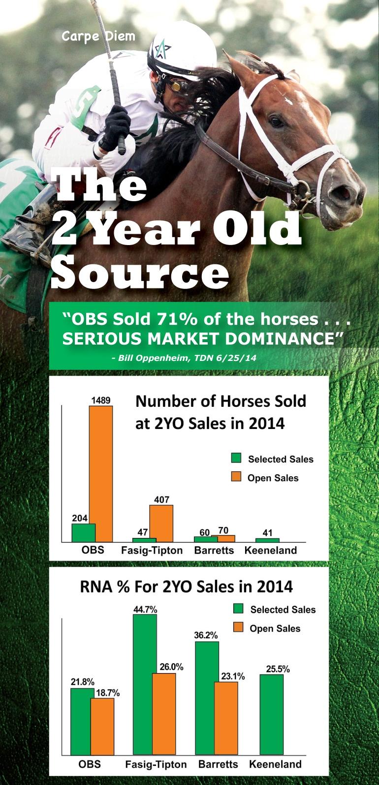 TDN half #8 Horse Sold_webcrop