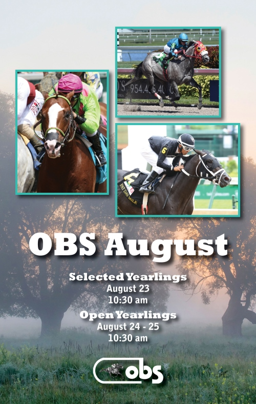 2016 August Yearling Sale