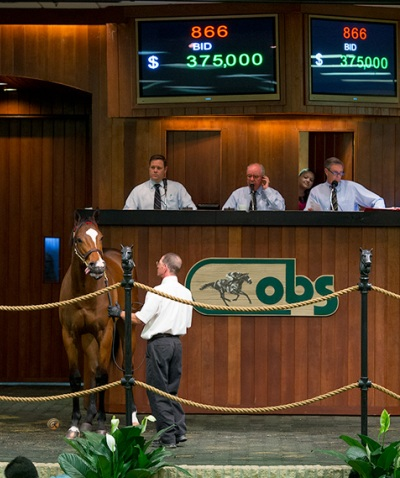 OBS April 2yos 13 SaleThursday 685 Old Fashioned 701 Colonel John $300k