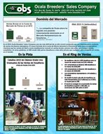 MarchNewsletter_2016_spanish-icon