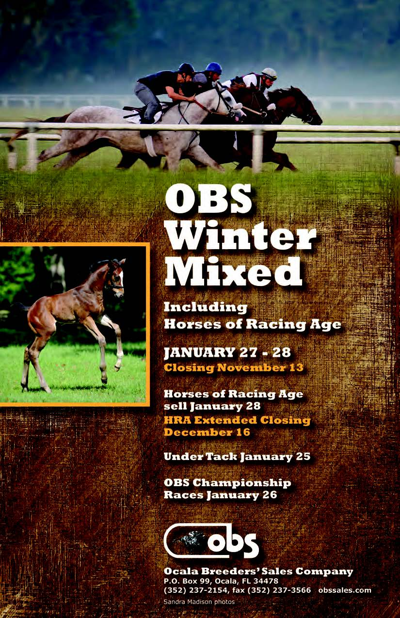 obs winter mixed closing 2016