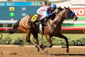 Kaleem Shah's Klimt and jockey Rafael Bejarano win the Grade I $300,   000 Del Mar Futurity Monday,    September 5, 2016 at Del Mar Thoroughbred Club, Del Mar, CA. ©Benoit Photo