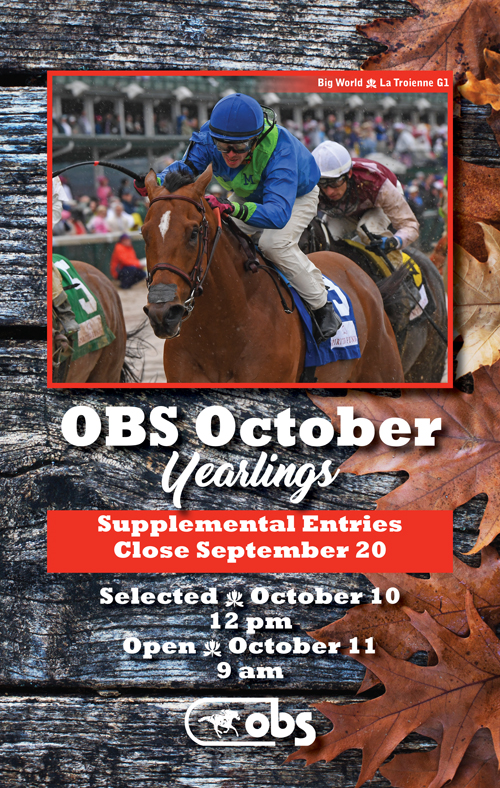 2017 October Yearling Sale