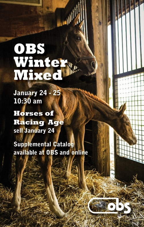 2018 Winter Mixed Sale