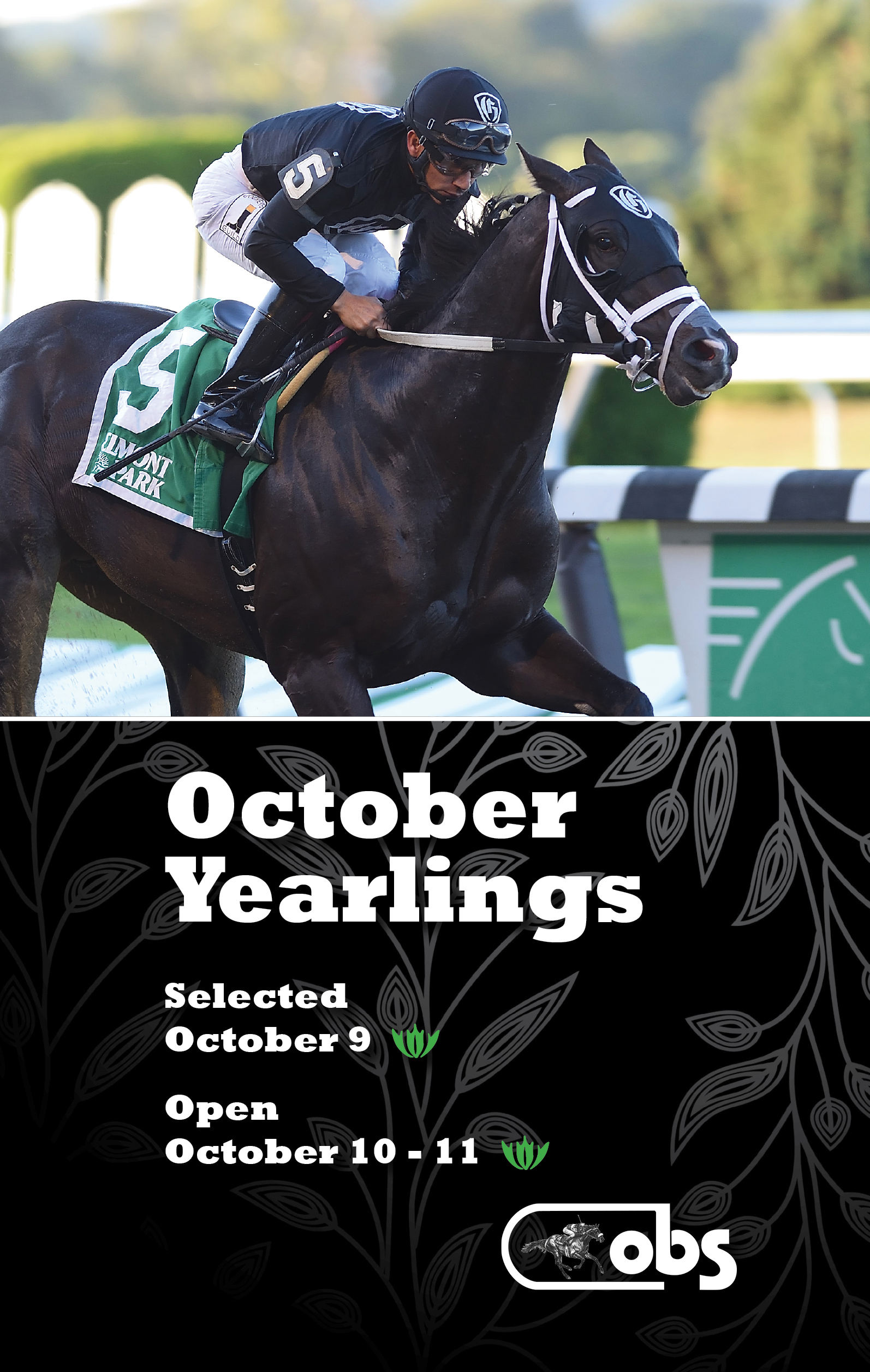 2018 October Sale of Yearlings