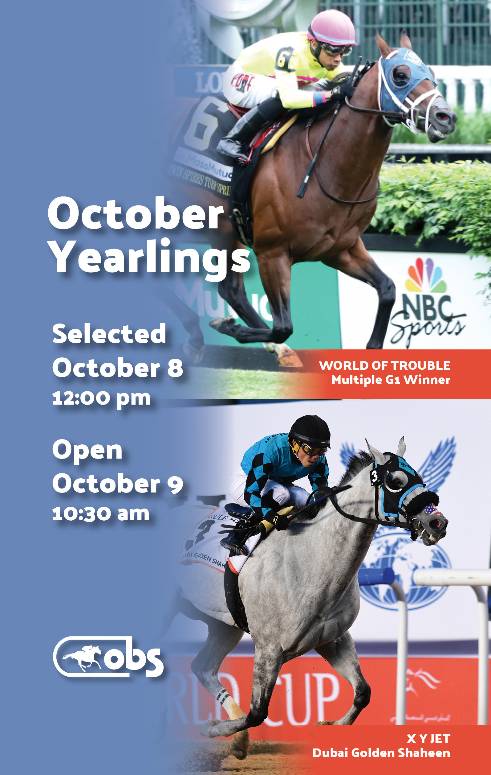 OBS Sales | Premier Thoroughbred sales venue in Ocala