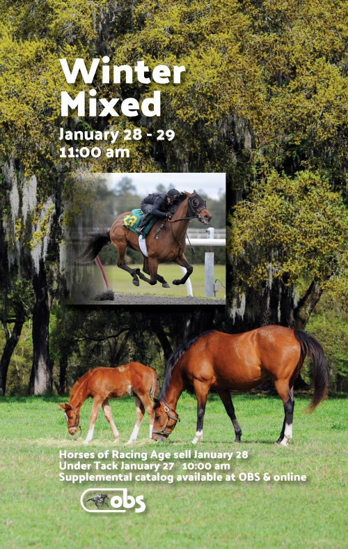 2020 Winter Mixed Sale