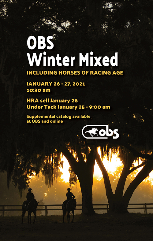 2021 Winter Mixed Sale
